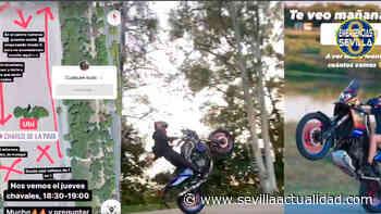 Localizan al organizador de la concentración para hacer «caballitos» en el Charco de la Pava - Sevilla Actualidad