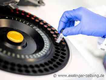Pharmazie: EU-Kommission will bis Oktober neue Medikamente gegen Corona - esslinger-zeitung.de