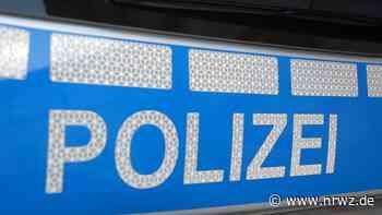 Schiltach: Hund stürzt aus Fenster und landet auf Motorhaube - Neue Rottweiler Zeitung online