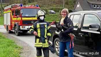 Feuerwehr Schmallenberg rettet verletzten Schwarzstorch - Westfalenpost