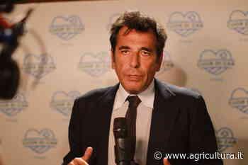 Italmercati: Pallottini riconfermato presidente. Entra il Mercato di Cesena - Agricultura.it