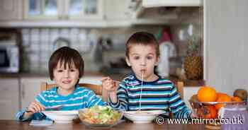 Top 10 dinnertime rules according to kids from watching TV to  leaving when done