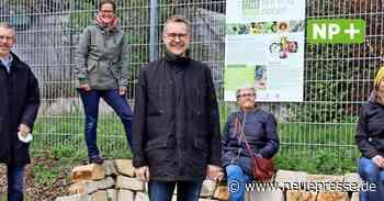 Wedemark: Tischlerei Biesel hat insektenfreundliches Firmengelände - Neue Presse