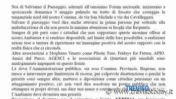 """Iniziativa """"Sporchiamoci le mani"""" a Mogliano Veneto - TrevisoToday"""