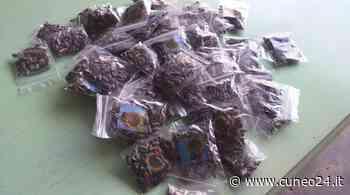 Farigliano, semi di girasole in distribuzione gratuita domani al mercato - Cuneo24