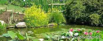 L'Orto botanico di Bergamo celebra le Giornate dei musei e della biodiversità - L'Eco di Bergamo