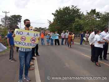 Moradores de Guararé rechazan proyecto porcino que podría convertirse en fuente de contaminación - Panamá América