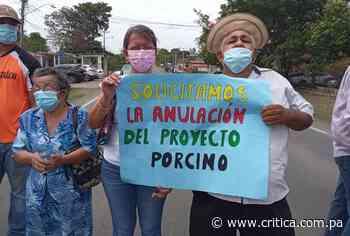 Moradores de Guararé rechazan proyecto porcino - Crítica Panamá