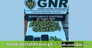 NIC de Santo Tirso detém três jovens por tráfico de droga - Jornal do Ave