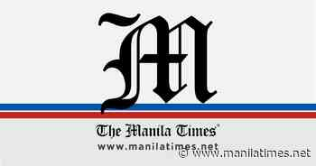 Ecocide as international crime – The Manila Times - The Manila Times