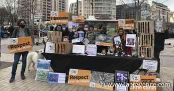 Les Pennes-Mirabeau : One Voice mobilisée pour la cause animale - La Provence