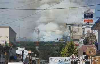 Incendio forestal afecta hectáreas de bosque en Tlaxiaco 19:42 Max León - Quadratín Oaxaca