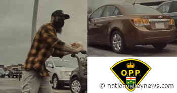Russell OPP asking public for help identifying suspect regarding altercation in Embrun | Nation Valley News - Nation Valley News