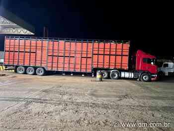 DRF de Rio Verde autua transporte de 273 bovinos com notas fiscais inidôneas - DM.com.br