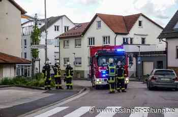 Brand in Deizisau: Technischer Defekt löst Brand in Scheune aus - esslinger-zeitung.de