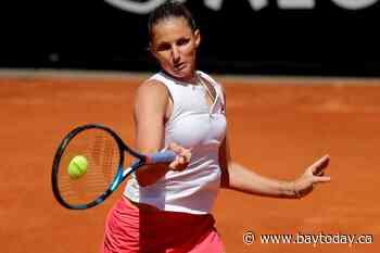 Djokovic outlasts Tsitsipas in 'toughest match' of year