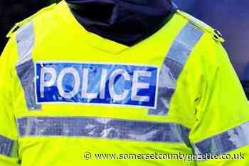 Chainsaws stolen from shed in Milverton - Somerset County Gazette