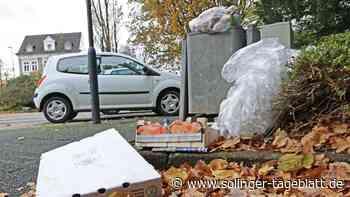 Solingen: Probleme mit Vandalismus und Müll wachsen - solinger-tageblatt.de
