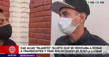 La Victoria: Cayó Pajarito, ranqueado cogotero que operaba en el corazón del distrito - América Televisión