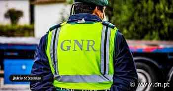 GNR encerra duas festas em Palmela e Sesimbra com mais de 160 pessoas - Diário de Notícias - Lisboa