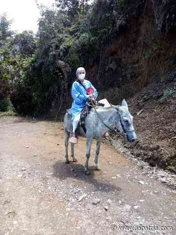 Blanca llega con vacunas a pie, en carro o a caballo en Aranzazu - La Patria.com
