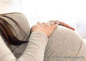 Estado de SP decide suspender vacinação COVID-19 em grávidas com comorbidades para todos os imunizantes disponíveis no país - Prefeitura de Assis