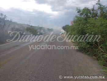 Se registra nuevo un incendio en la vía Ticul-Muna - El Diario de Yucatán