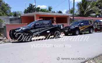 Asesinan a un perrito en Ticul, lo apuñalaron - El Diario de Yucatán