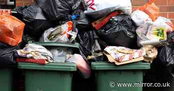 PM's 'mad National Bin Service' could see waste uncollected for a month