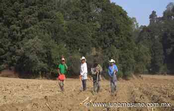 En Amecameca, Edomex; Candidato a diputado local Mario Aguilar, se compromete con el campo agrícola. - UnomásUno