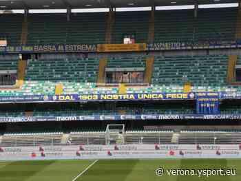 Verona-Bologna, l'Arbitro sarà Marchetti di Ostia Lido (Serie A 2020-21) - Verona YSport