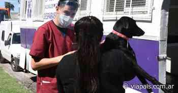 El Quirófano Móvil visitará barrio Villa Rosas - Vía País