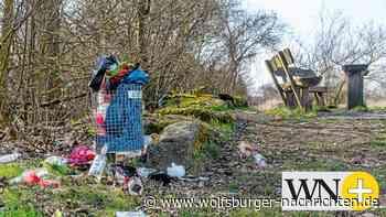Müllt sich Wolfsburg zu? - Wolfsburger Nachrichten