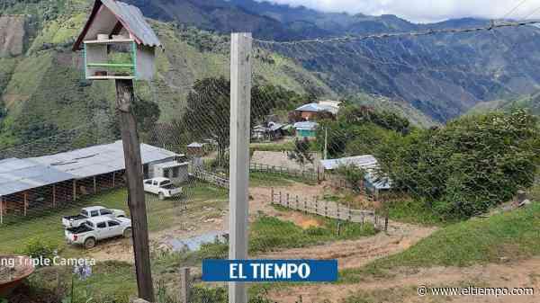 Extraña muerte de líder de mujeres en Chaparral, Tolima - El Tiempo