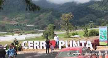 Se reinventan. Productores de Cerro Punta apuntan al turismo local en Chiriquí - Mi Diario Panamá