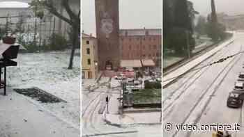 Maltempo, violenta grandinata in Veneto. Chicchi come noci, danni a colture e auto - Corriere TV