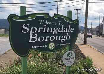 Springdale Council votes to oust manager | TribLIVE.com - TribLIVE