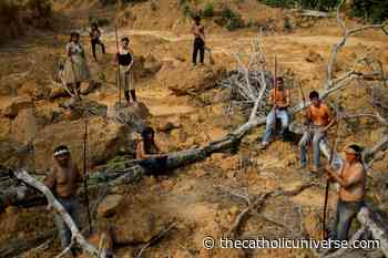 Amazon bishops say bill threatens Brazil's Indigenous peoples and forest - The Catholic Universe