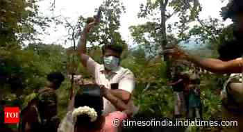 Act against forest officer or we'll protest: Sattari locals - Times of India