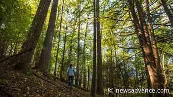 Forest Service trims Pedlar plan - Lynchburg News and Advance