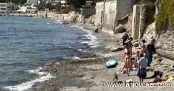 La Ciotat : la plage canine se déplace à Fontsainte - La Provence