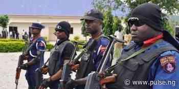 NSCDC arrests 6 suspected cult members in Ilorin - Pulse Nigeria