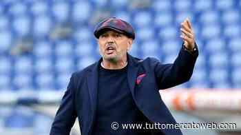 Bologna, rossoblù in campo verso la trasferta di Verona: terapie per Svanberg e Danilo - TUTTO mercato WEB