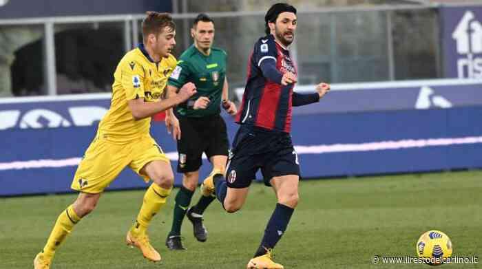 Soriano incubo del Verona: il centrocampista a caccia del primo gol col Bologna - il Resto del Carlino