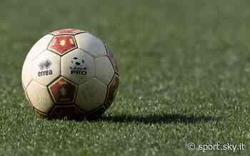 Serie C, recupero primo turno dei Playoff: Triestina-Virtus Verona in pay-per-view su Sky - Sky Sport