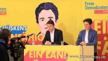 FDP vor Wahl in Sachsen-Anhalt: Aufwind Ost?