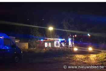 Brand in stalling in Zonhoven