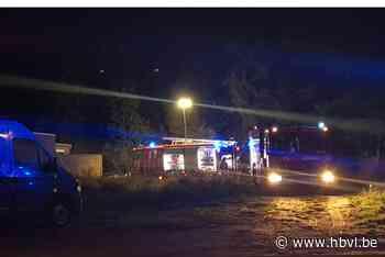 Brand in stalling in Zonhoven (Zonhoven) - Het Belang van Limburg