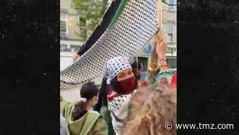 Bella Hadid Joins Palestine March in Brooklyn
