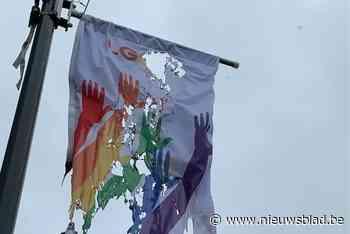 """In brand gestoken regenboogvlag meteen vervangen door nieuw exemplaar: """"Haatmotief is niet uitgesloten"""""""